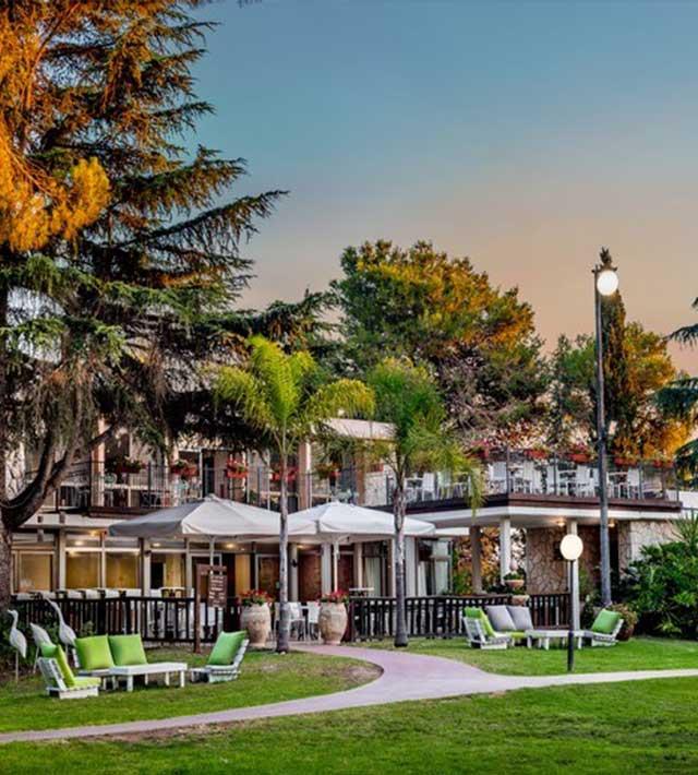 תמונת המלון